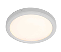 Sophia led light suppliers in uae
