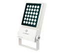 Gisella led light suppliers in uae