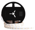 SMD 3030 IP20 led light suppliers in uae