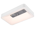 Lauram led light suppliers in uae